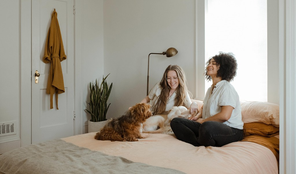 dog and girls on bed with duct cleaning
